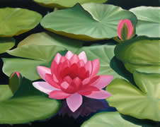 Rose waterlilies, oil painting