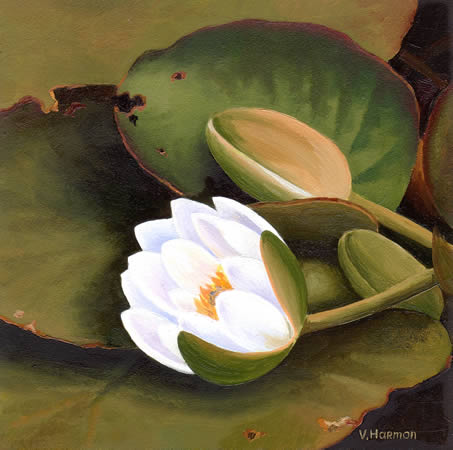 White Lilies, Oil painting