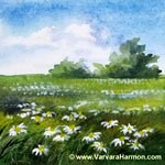 Daisies Field - Mini, watercolor painting
